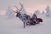 ORIGINAL SANTA CLAUS LETTERS DIRECT FROM LAPLAND FINLAND!